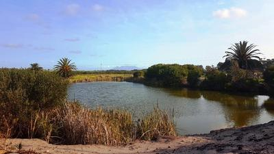 Property For Sale in Old Mamre Rd, Philadelphia, Cape Town