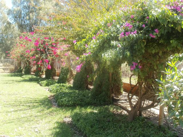 Property For Sale in Kalbaskraal, Malmesbury 14