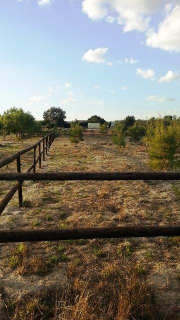 Property For Sale in Klein Dassenberg, Atlantis 8