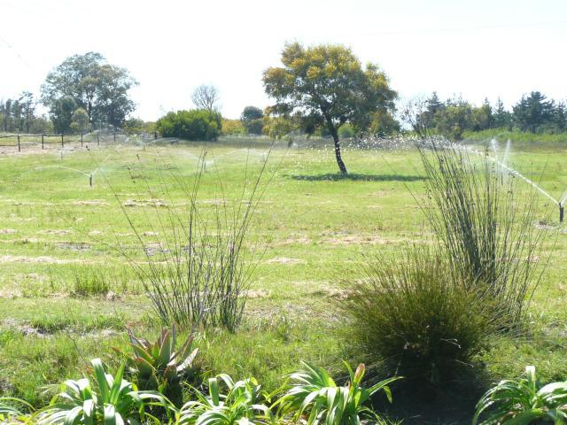 Property For Sale in Philidelphia, western cape, Cape Town 15