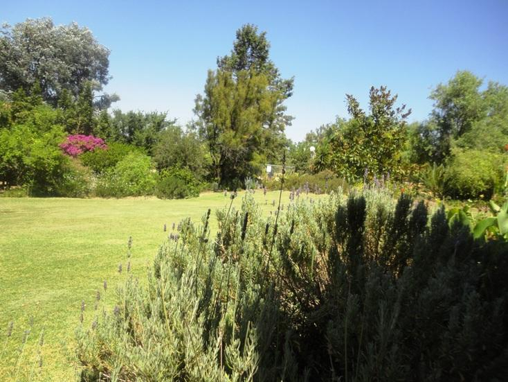 Property For Sale in Philadelphia, Cape Town 37
