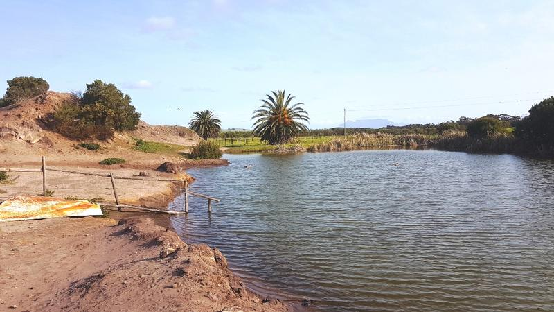 Property For Sale in Old Mamre Rd, Philadelphia, Cape Town 29