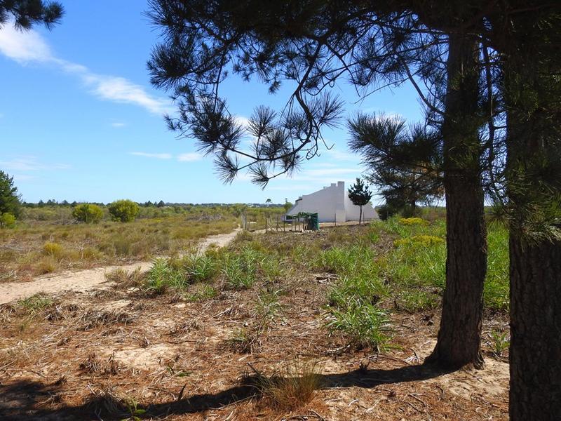 Property For Sale in Klein Dassenberg, Atlantis 4