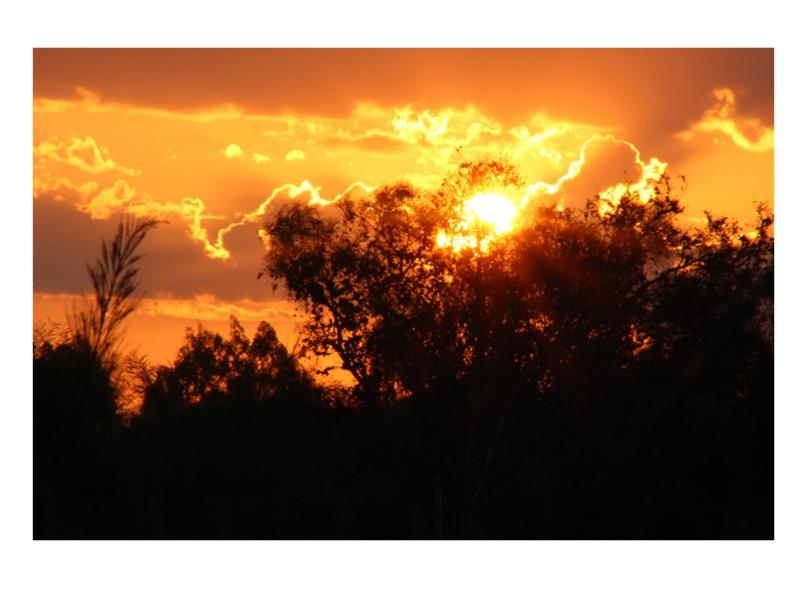 Property For Sale in Tierfontein, Tierfontein 7