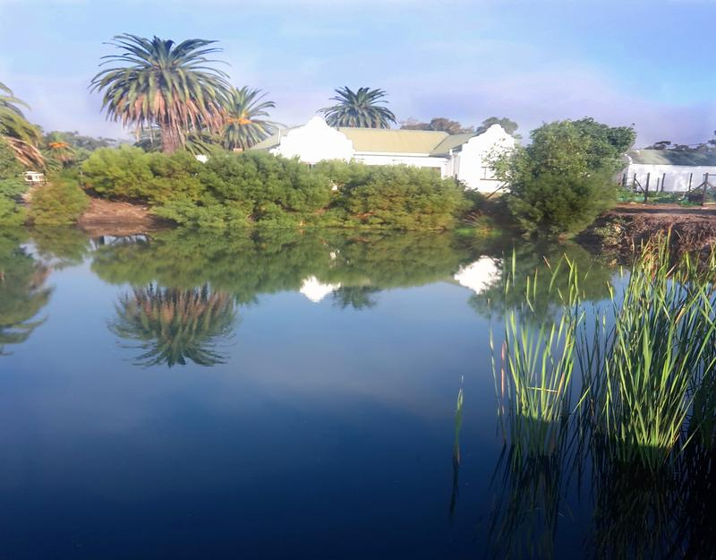 Property For Sale in Three Fountains, Cape Town 1