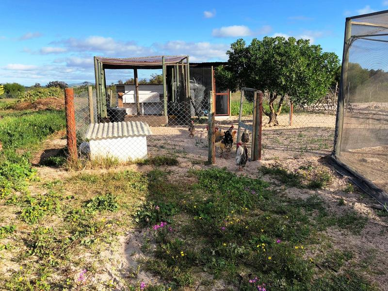 Property For Sale in Klein Dassenberg, Atlantis 36