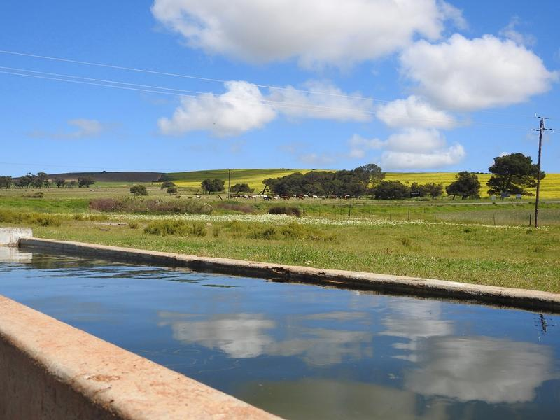Property For Sale in Darling, Malmesbury 11