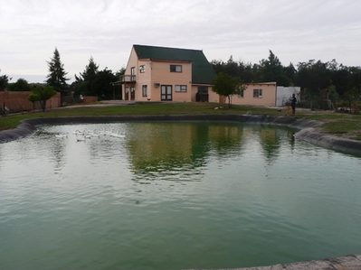 Property For Sale in Tierfontein, Cape Town