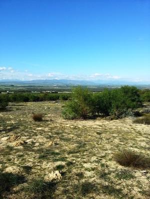 Property For Sale in Groenfontein, Klein Dassenberg Philadelphia