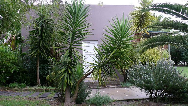 Property For Sale in Tierfontein, Atlantis 5