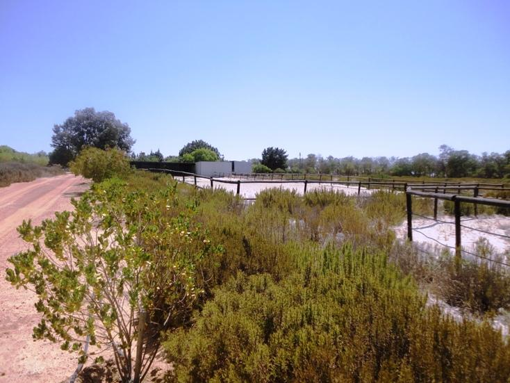 Property For Sale in Philadelphia, Cape Town 19