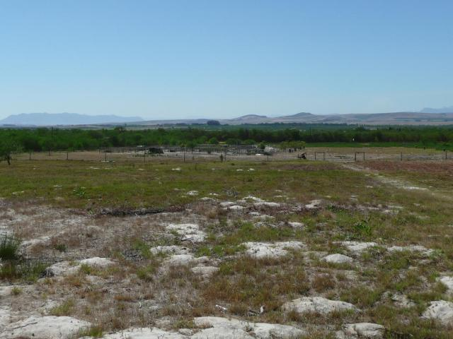 Property For Sale in Philadelphia / Klein Dassenberg Rd, Cape Town 13