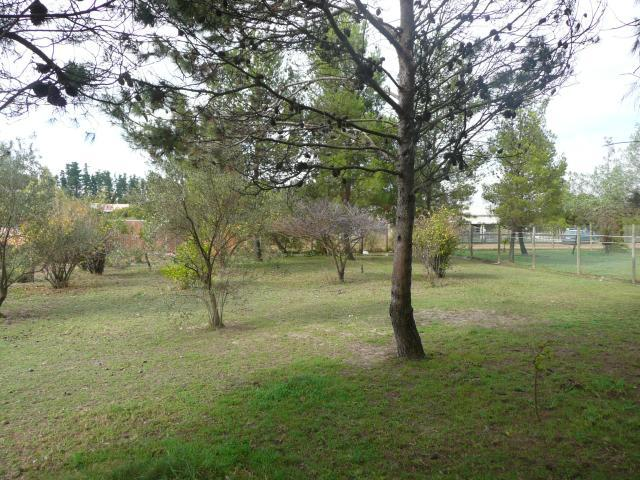 Property For Sale in Morning Star   , Cape Town, Western Cape 4