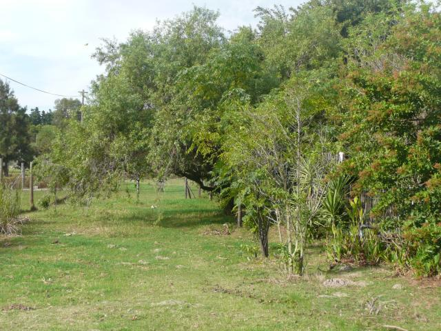 Property For Sale in Morning Star   , Cape Town, Western Cape 7