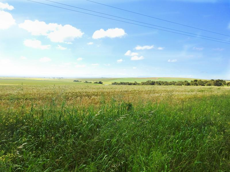 Property For Sale in Darling, Malmesbury 8