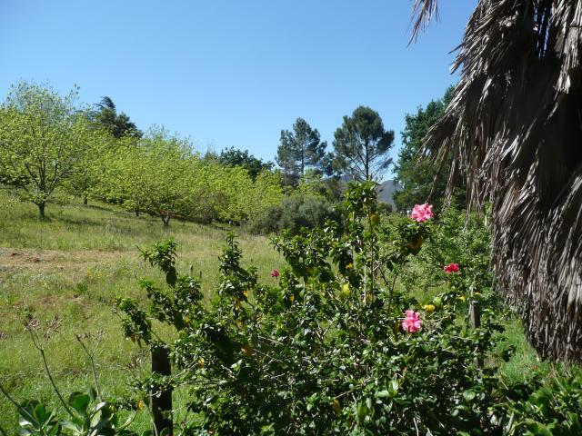 Property For Sale in Paarl, Paarl 10