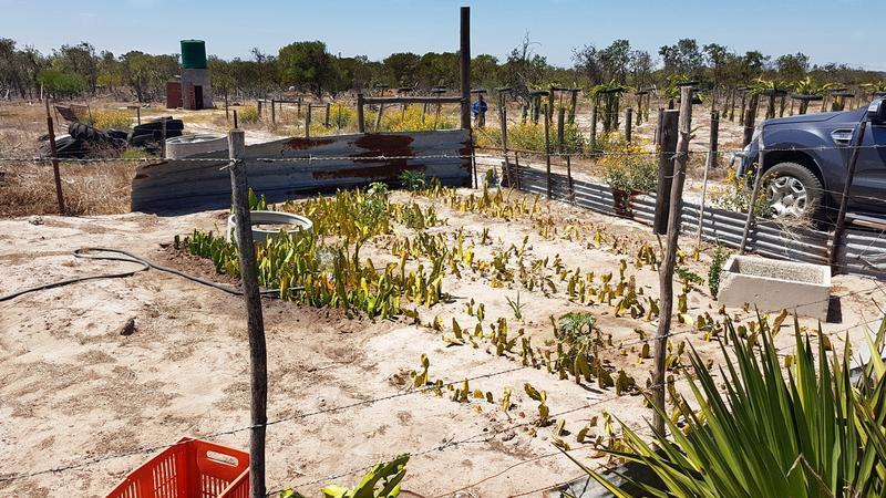 Property For Sale in Philadelphia, Old Mamre Rd R304  5