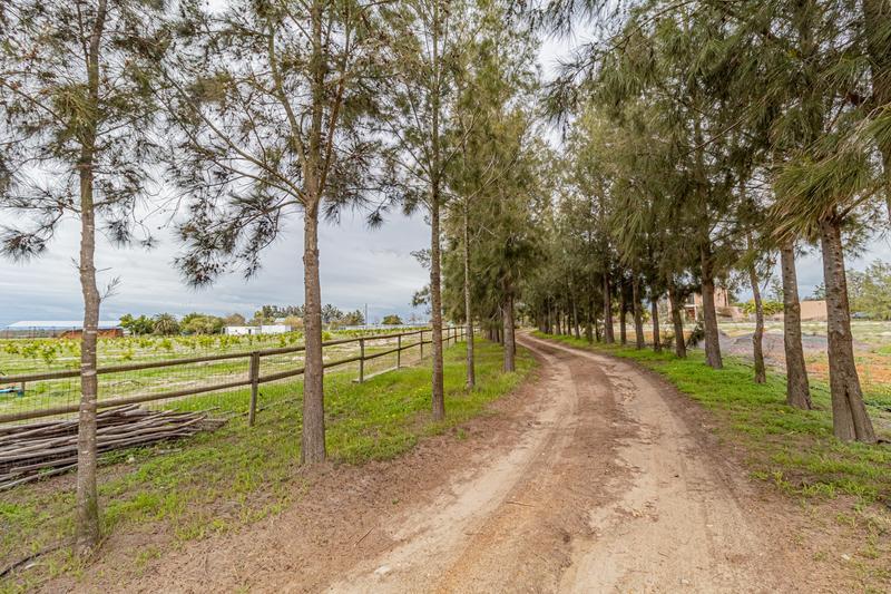 Property For Sale in Groene Rivier Estate, Groene Rivier 25