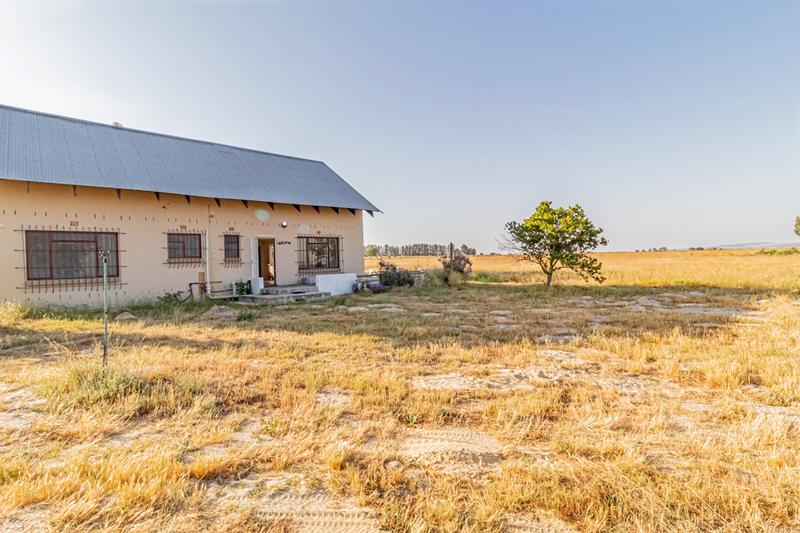 Property For Sale in Klein Dassenberg, Groene Rivier, Klein Dassenberg, Cape Town 16