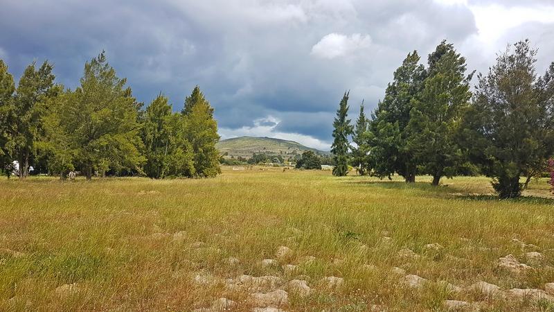 Property For Sale in Klein Dassenberg, Groene Rivier, Klein Dassenberg, Cape Town 35