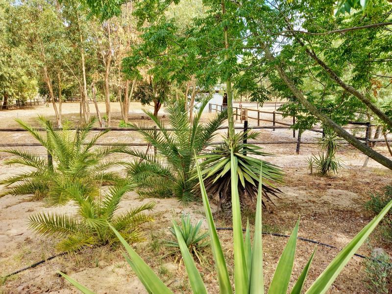 Property For Sale in Klein Dassenberg, Atlantis 14