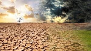 Day Zero, the day we may have to start queueing for water, has moved out to mid-May 2018 due to a decline in agricultural usage.