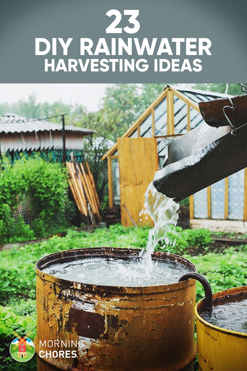 Around 600 gallons of rainwater can be harvested from about one inch of rain if it falls from a thousand square foot roof. Doesn't that sound like a lot of water that you could harvest and use for free? Wanna hear from humans all over the world doing cool stuff?